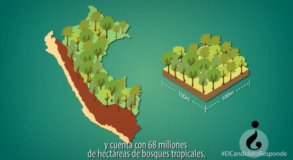 Elecciones Perú 2016: Propuestas de Conservación de Bosques y Deforestación